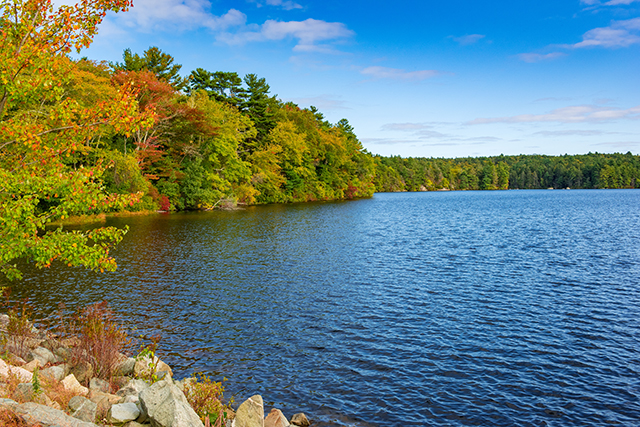 Arcadia State Park, Exeter, Rhode Island
